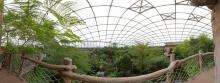 Gondwanaland im Zoo Leipzig II