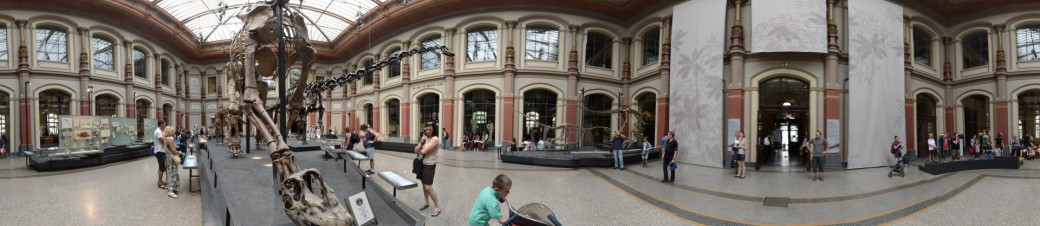 Dinosaurier-Museum Berlin